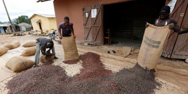 Cacao : la conjoncture met le Ghana et la Côte d'Ivoire sous pression