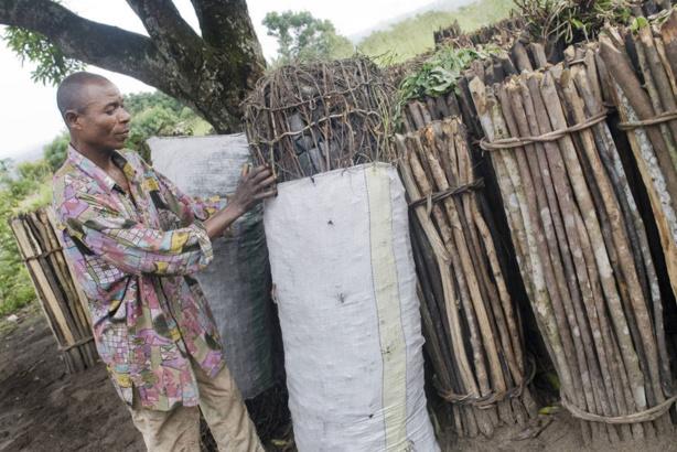 Le changement climatique responsable de la faim et de la pauvreté de millions de personnes, selon la FAO