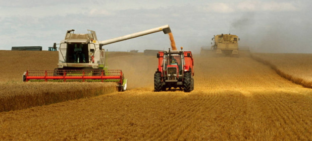Les polluants issus de l'agriculture représentent une menace sérieuse pour l'eau du monde entier