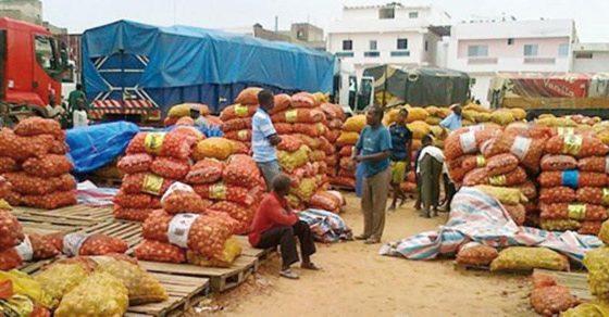 Sénégal : L'activité économique interne est en hausse de 6,9% en glissement annuel
