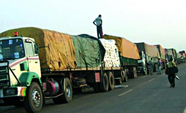 Sénégal : Les exportations en repli en juin