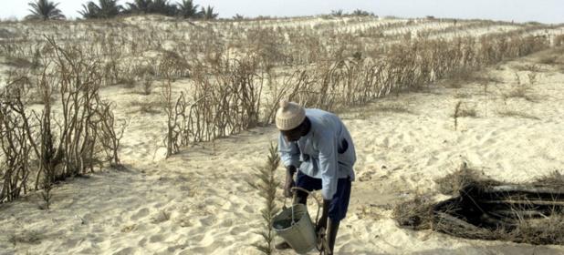 Le Sénégal, deuxième pays d'Afrique à adhérer à la Convention sur l'eau