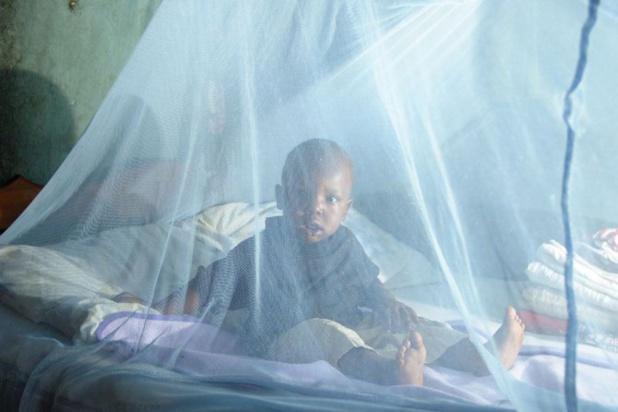 Paludisme: 84% des ménages possèdent une moustiquaire
