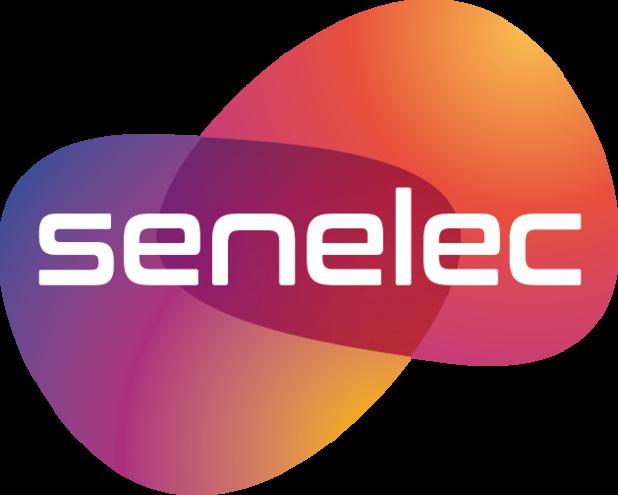 Sénégal : LE FSE débloque 9,7 milliards de FCFA pour la  SENELEC en juillet 2018