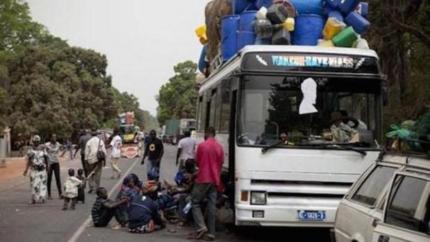 Immigration internationale : Les Guinéens sont les plus nombreux au Sénégal