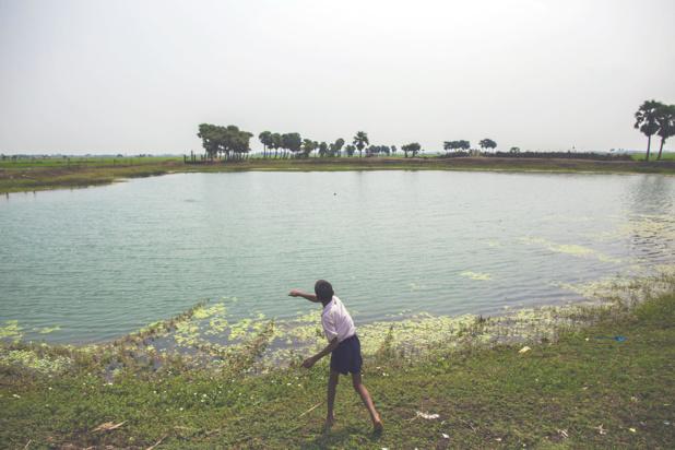 Photo PNUD Inde/Prashanth Vishwanatha Un étang dans le village de Dhokandpur, en Inde, collecte l'eau de pluie qui est ensuite utilisée par les villageois uniquement pour boire.