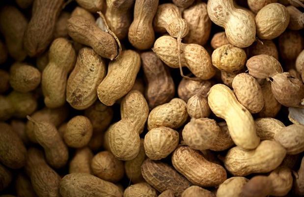 Arachide :  Le prix sera connu au plus tard fin octobre, assure le ministre de l'Agriculture