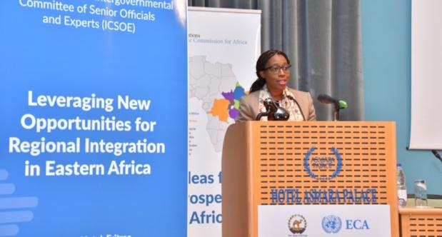 Conférence de la Cea sur le financement de l'énergie :  Les meilleures pratiques discutées à Asmara en Erythrée