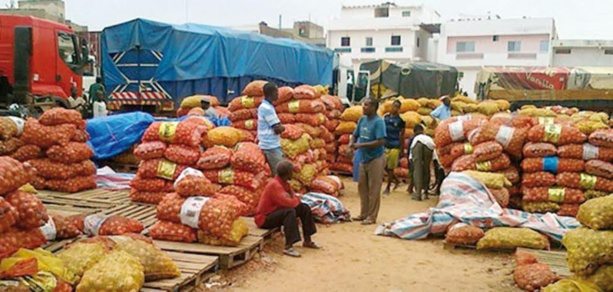 Activité économique hors agriculture et sylviculture : Le Sénégal enregistre une contraction de 5,9% en variation trimestrielle