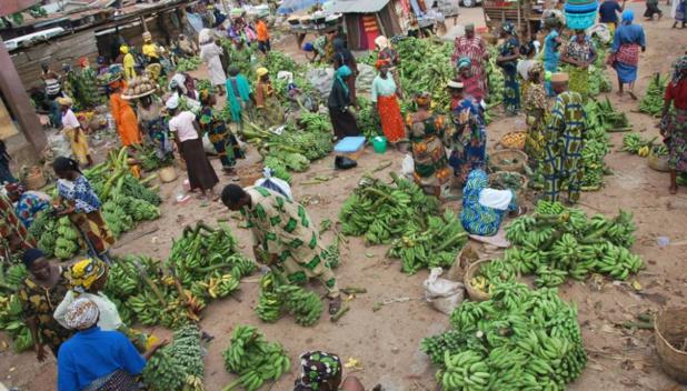 Banque mondiale : « Le système alimentaire est très loin de pouvoir nous aider à réaliser les Objectifs de développement durable»