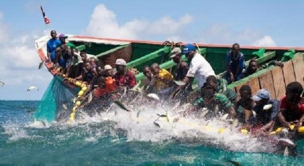 Sénégal : Forte contraction de l'activité du secteur de la pêche au mois de juillet