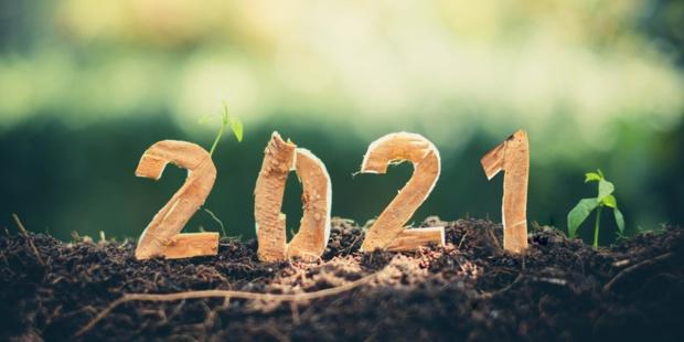 Optimisme pour la nouvelle année