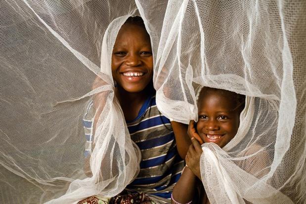 L'élimination du paludisme, pourquoi le secteur privé doit jouer son rôle