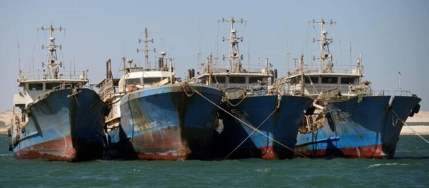 Conséquences néfastes de l'accord de pêche entre le Sénégal et l'Union européenne : Greenpeace demande des mesures pour éviter le déclin de la pêche sénégalaise