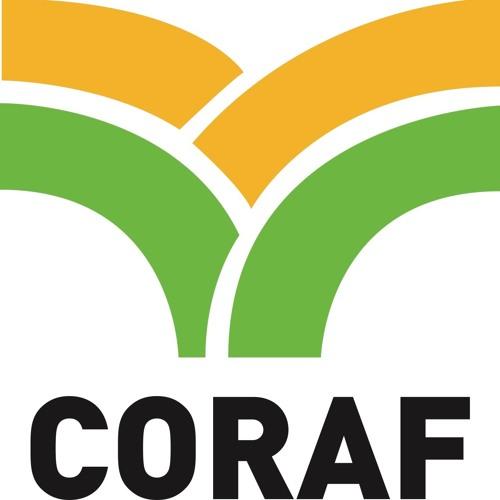 Implication du secteur privé dans l'agroscience et la Recherche Développement  : Le Coraf organise un webinaire le 24 juin prochain