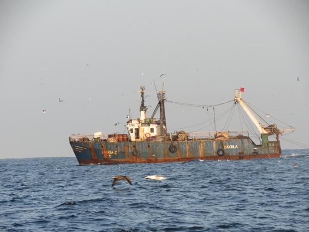La baleine la pêche russe
