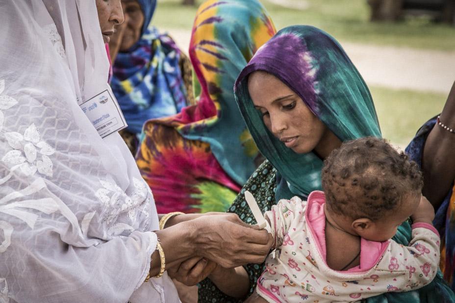 La FAO appelle à davantage d'investissements pour contrer la hausse de la faim