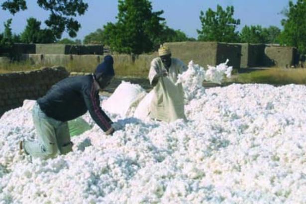 Sénégal : De bons résultats enregistrés au niveau de l' « égrenage de coton et fabrication de textiles », des activités extractives