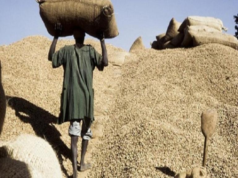 Agriculture: Macky Sall souhaite une campagne sans faute