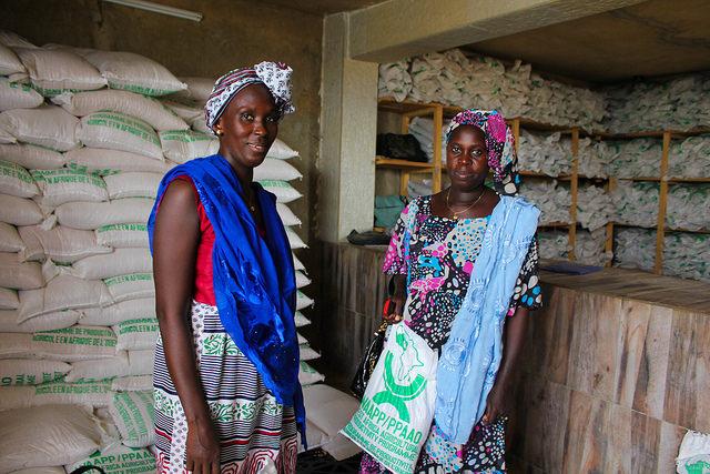 Gérantes de petites exploitations agricoles au Sénégal. © Daniella Van Leggelo-Padilla/Banque mondiale