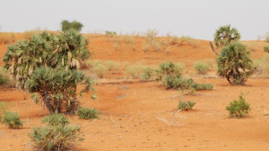 Lutte contre le changement climatique : Appel à une recapitalisation des fonds d'investissement climatique