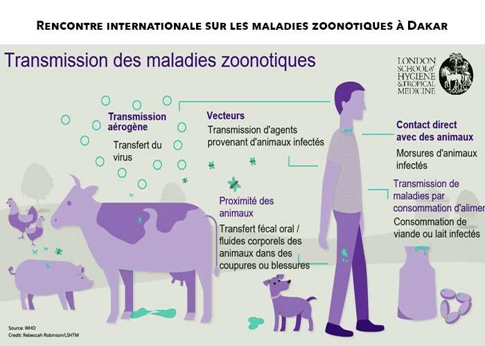 Evaluation conjointe des risques de zoonoses :  Le personnel de la Fao, de l'Oie et de l'Oms outillé