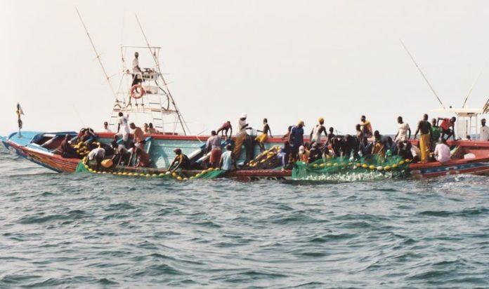 Sénégal : Plongeon du secteur primaire en Août