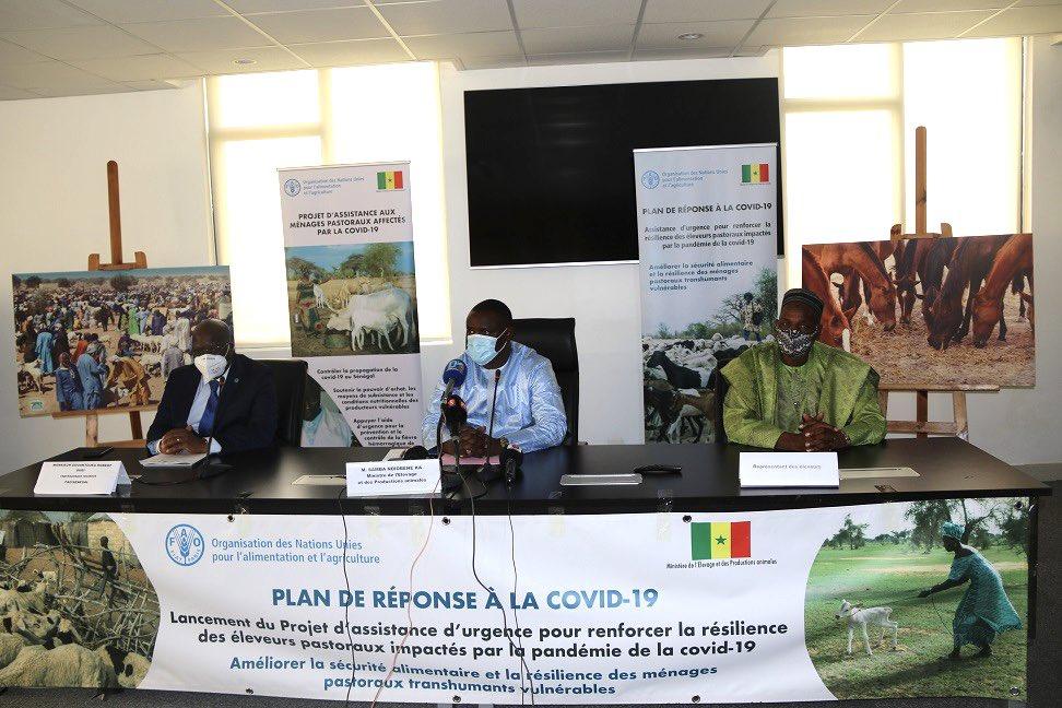 Riposte au Covid-19 :  Lancement d'un projet d'assistance d'urgence aux éleveurs