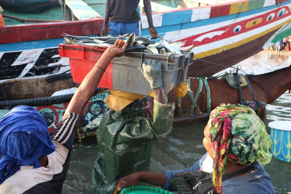 Covid-19 en Afrique: la CAOPA toujours dans la mobilisation pour combattre la pandémie