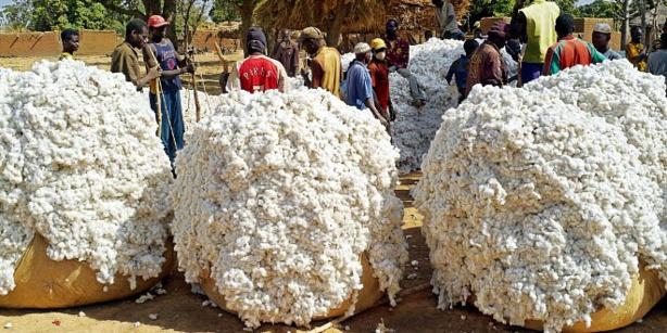 Uemoa : Hausse des principales matières premières exportées en février 2021