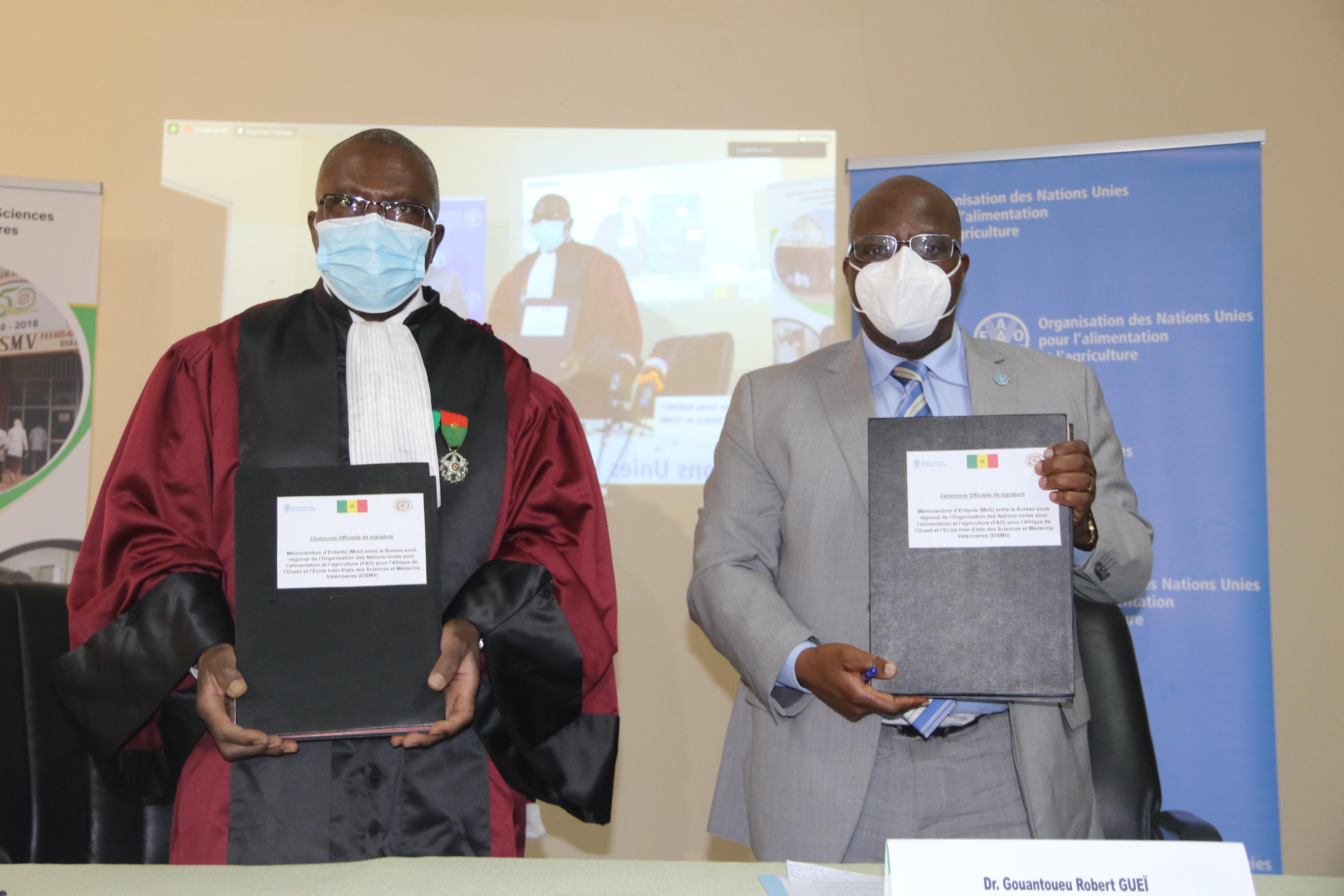 Développement de l'élevage et de la  santé animale en Afrique : La Fao et l'Eismv de l'Ucad de Dakar nouent un partenariat