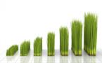 Environnement : Les progrès dans le domaine de la croissance verte sont trop lents