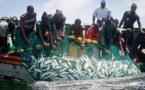Ecorégion Wamer : La pêche fait travailler plus de 3 millions de personnes