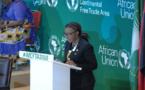 Afrique : « faisons nos échanges commerciaux sur le continent et ensemble » (CEA)