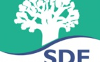 Sénégal: La grosse pagaille de la Sénégalaise des Eaux (SDE)
