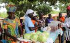 Conflits et sécheresse : 124 millions de personnes frappées par le fléau de la faim en 2017 (ONU)