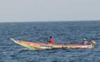 Pêche artisanale responsable et durable :  Une journée de réflexion et de sensibilisation sur les Directives volontaires de la FAO prévue lundi à Dakar