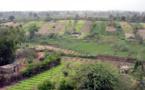 DÉVELOPPEMENT DU MARAICHAGE DANS LA ZONE DES NIAYES : 16 Forages pour l'irrigation fonctionnels