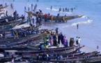 Vers la création du comité national consultatif de suivi des directives volontaires pour une pêche durable