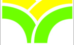 Agriculture: Dakar abrite un conclave du secteur semencier ouest-africain
