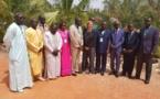 Lutte contre la déforestation : Mame Thierno Dieng en appelle à des actions concertées