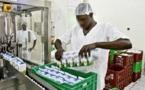 Sénégal : Chute de l'activité industrielle en Juin