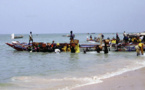 Pêche : Plus de 3000 tonnes de poulpes débarquées  pour une valeur de 5,6 milliards de francs CFA  dans le département de Mbour en août 2018