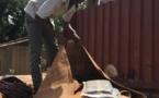Lutte contre les produits stupéfiants et les faux médicaments : Plusieurs saisies effectuées à Kédougou, Joal, Matam et Linguère