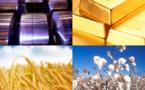 Environnement : Selon l'OCDE, l'utilisation de matières premières devrait doubler d'ici 2060