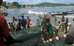 Afrique de l'Ouest : Vers la mise en œuvre d'un nouveau projet de la FAO intitulé ''initiatives côtières de la pêche''