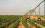 Les politiques de subventions agricoles : un débat de sourds entre Etat et agriculteurs