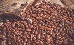 La production mondiale de café est attendue à environ 10,065 millions de tonnes pour la campagne caféière 2018/2019