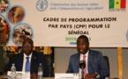 Cadre de Programmation par Pays: La FAO débloque 29 milliards Fcfa d'ici 2023