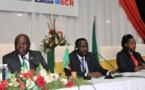 La vision de l'Afrique pour la prospérité et l'inclusion requiert des statistiques précises et en temps opportun, dit la Vice-présidente Wina